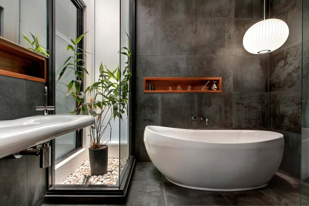 plant feature bathroom-compressed