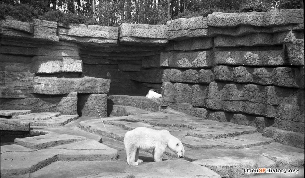 SF 1940s zoo