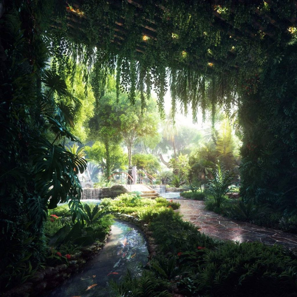 rainforest hotel canopy