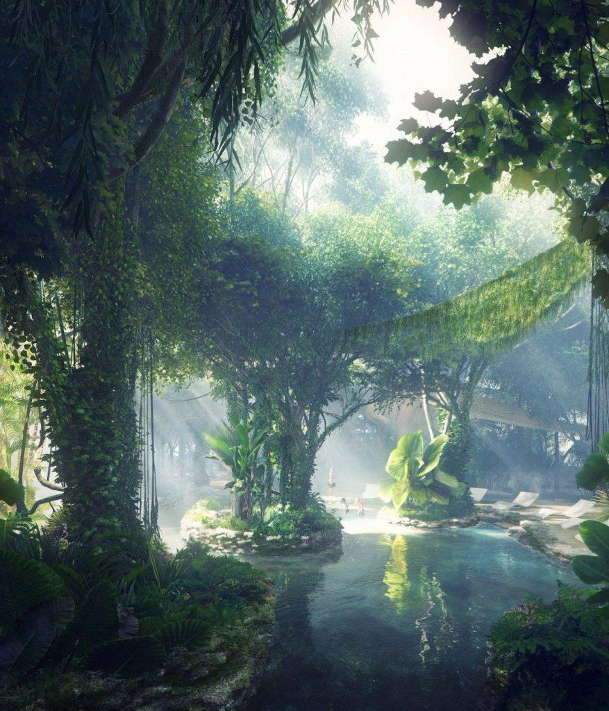 rainforest hotel splash pool