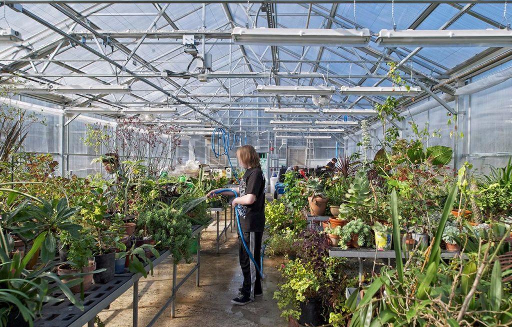 lynnwood high green house