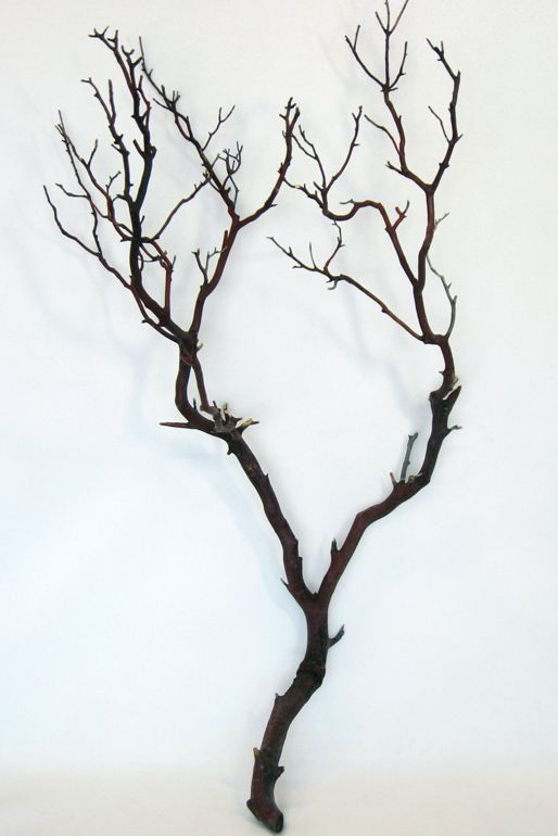 natural-manzanita-branches-compressed