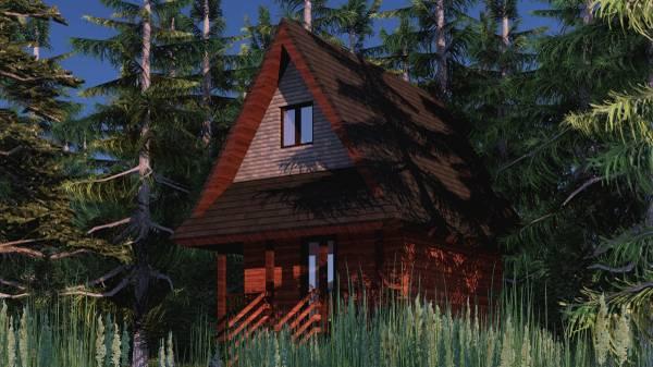 washington cabin stealth