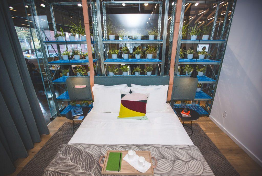 ThePlant_Bedroom