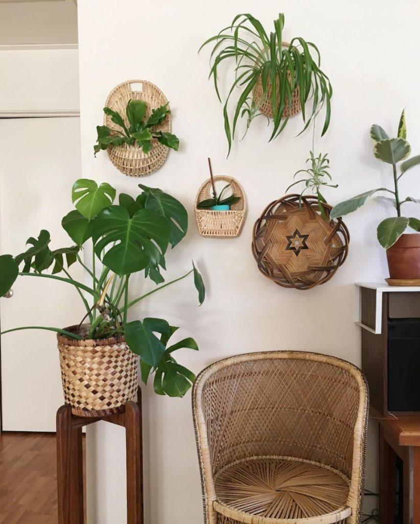 11 Space Saving Ways To Display Houseplants
