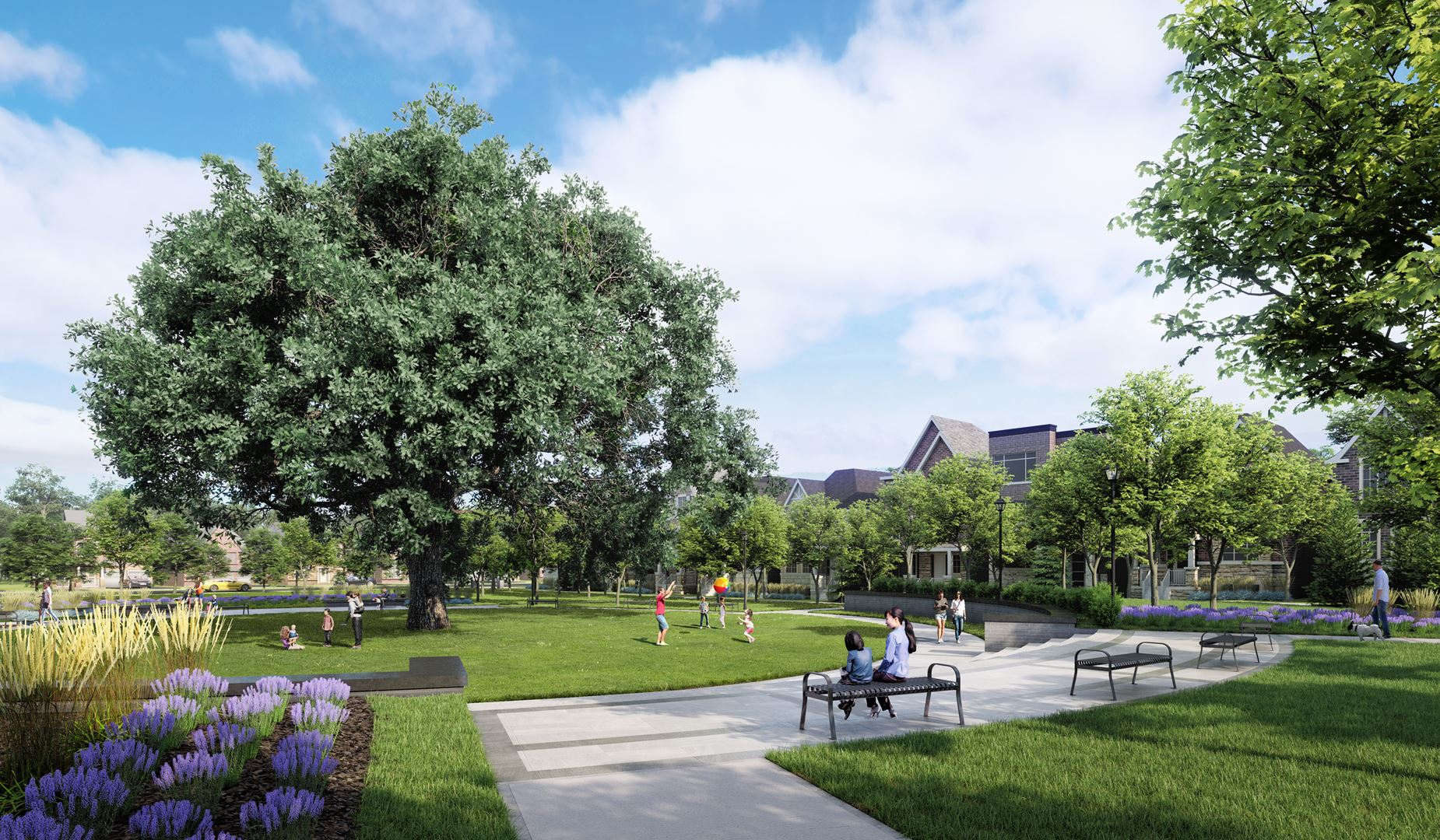 UnionVillage_Minto_Tree