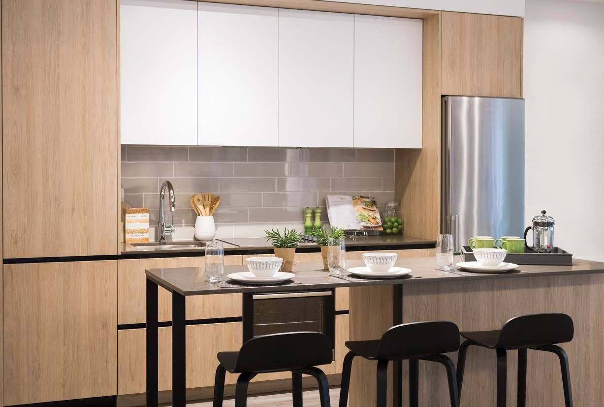 ArtsyBoutiqueCondos_Kitchen