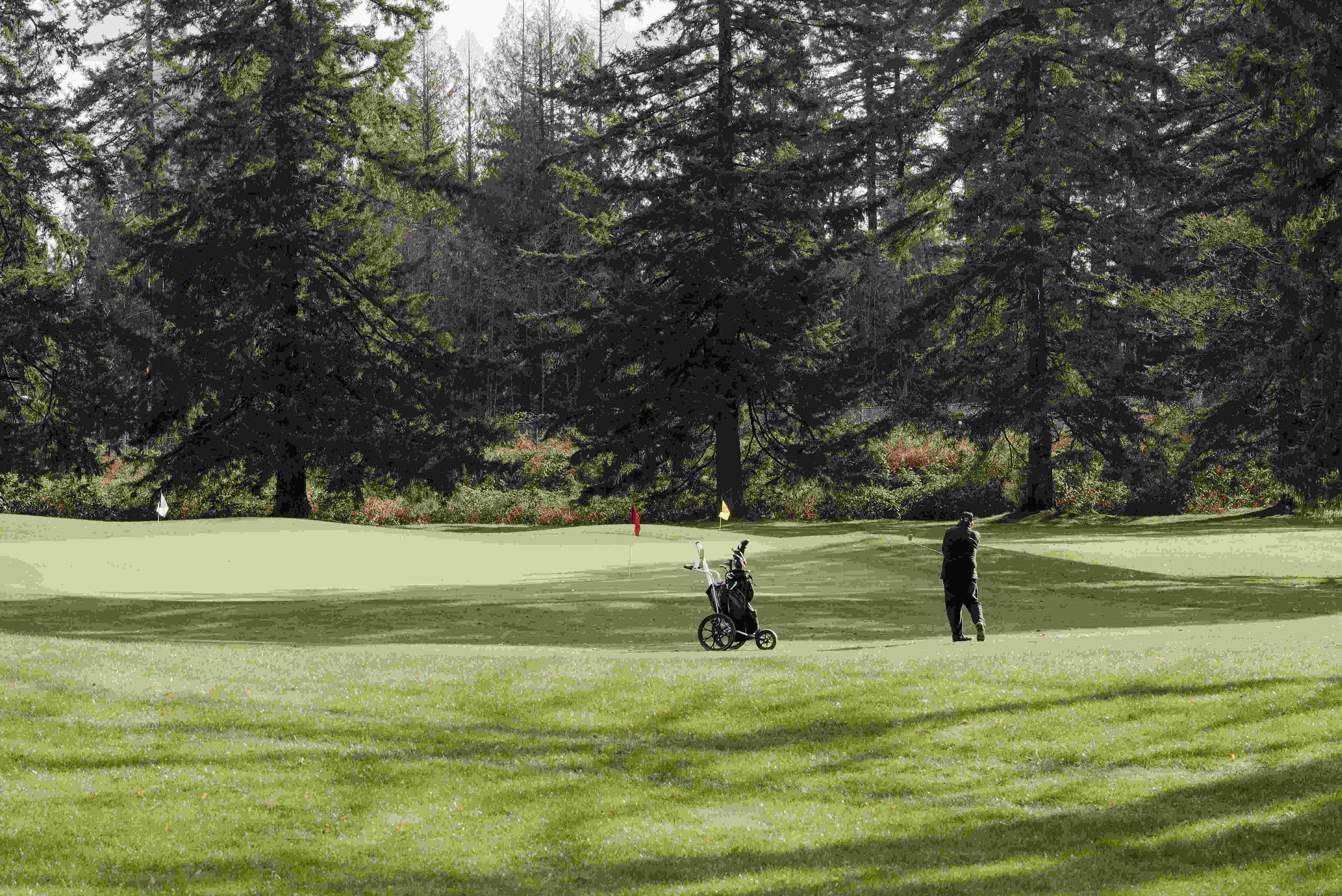 West_Golf